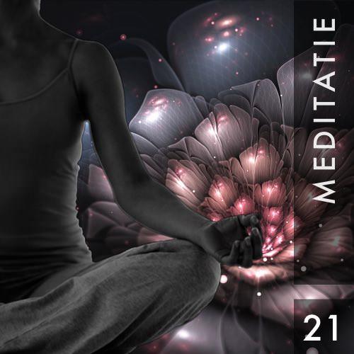 Meditatie 21 Ophouden met streven