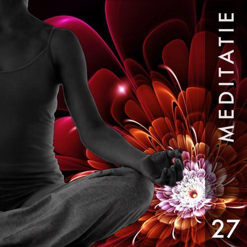 Meditatie 27 Soeverein als de zon